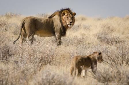 120812_Namibia_2477-2