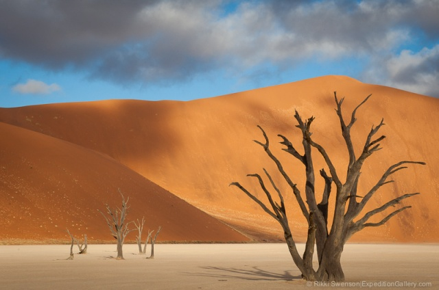 Dead Vlei, in the Namib Desert.